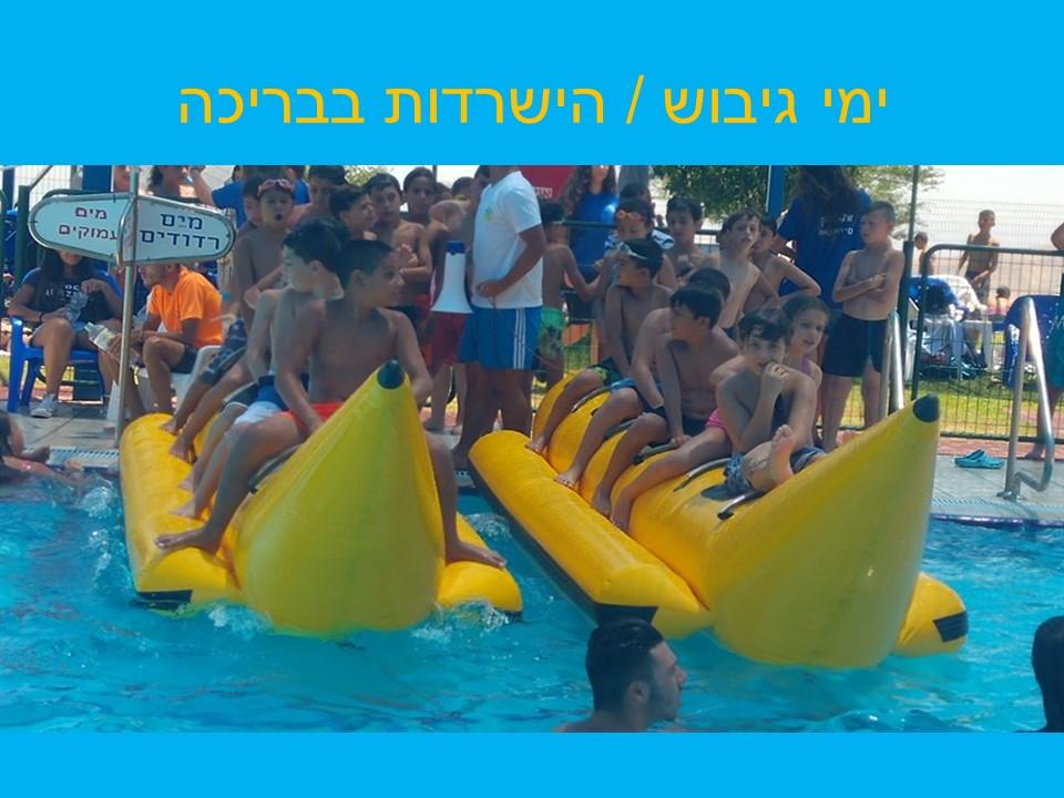 שתי בננות על הבריכה, בצבע צהוב .על כל בננה 4 ילדים. מתכוננים לתחרות שייט.